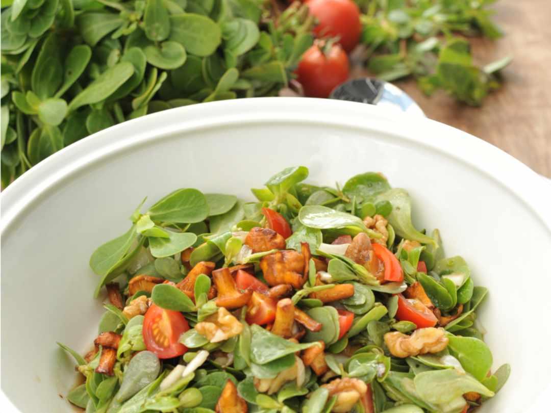 Portulak-Salat mit Pfifferlingen