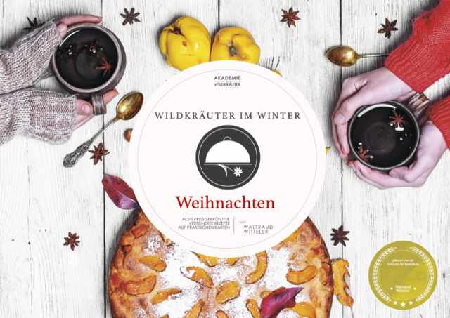Wildkräuter im Winter